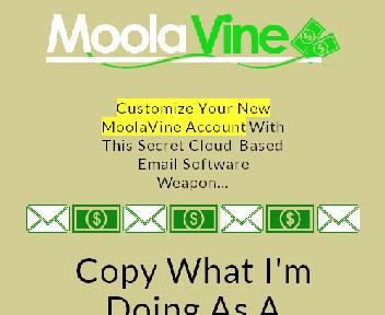 MoolaViners Only Coupon Codes