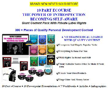 The Power of Introspection Coupon Codes