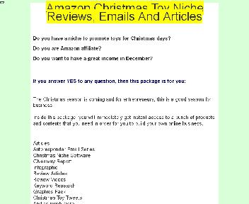 Amazon Christmas Toy Niche Reviews, Emails And Articles Coupon Codes