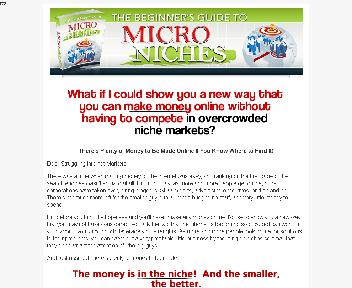 Beginners Guide to Micro Niches Coupon Codes